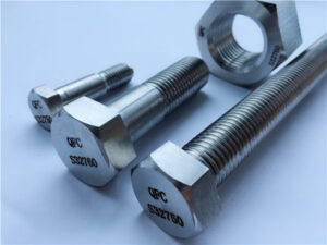 No.53-F55 S32760 1.4501 2507 HEX NUTS&BOLTS FASTENERS